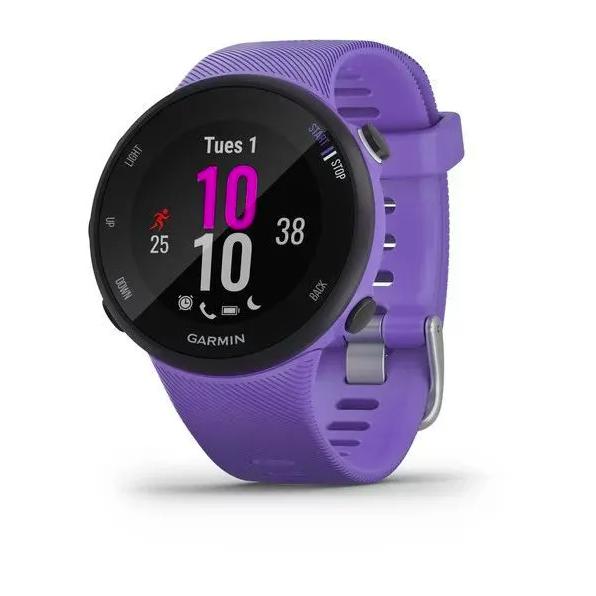 Часы Garmin Forerunner 45 GPS, Iris, малый размер